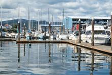Pleasure Boats In Marina