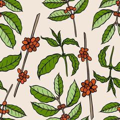 Fototapeta Do cukierni Vector seamless pattern of cocoa beans