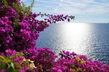 Obraz na SzkleSea in blossom