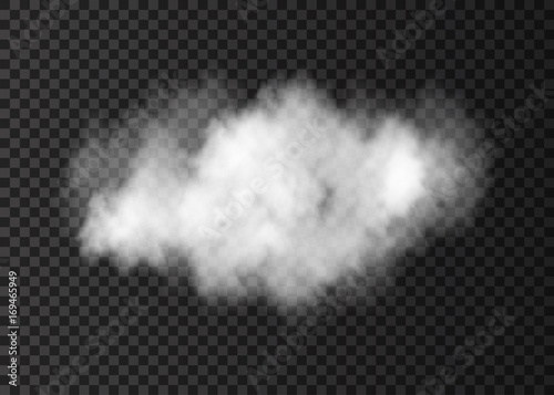 Garden Poster Smoke Realistic vector white smoke cloud isolated on transparent background.
