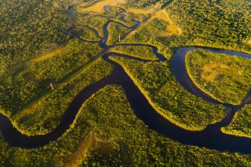 Panel Szklany Eko Amazon Rainforest in Brazil