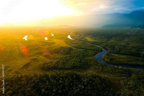 Amazon Rainforest in Brazil Canvas Print