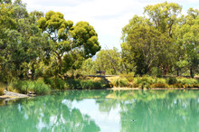 Australian Outdoor Bushland Setting With Large Pond