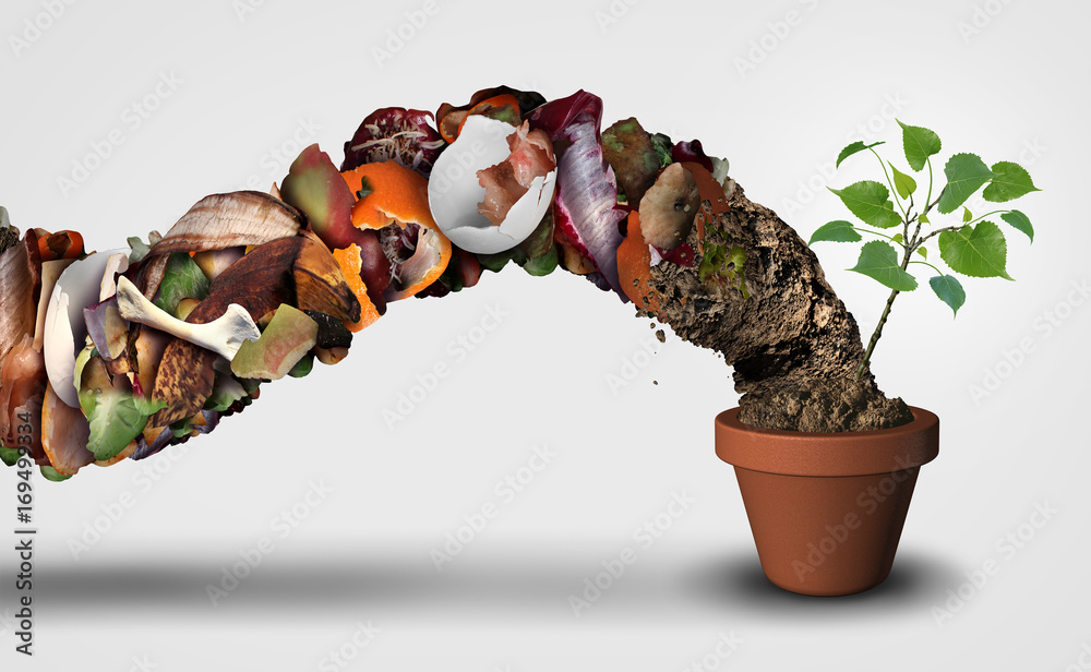 Fototapety, obrazy: Compost And Composting