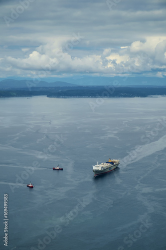 Tugboats coming to assist a container ship Wallpaper Mural