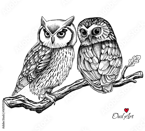 Image of two owls on a branch. Vector illustration.