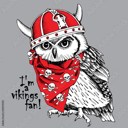 Owl in a red viking helmet with horns and neckerchief with images of skulls. Vector illustration.