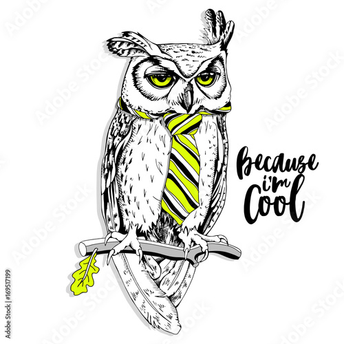 Deurstickers Uilen cartoon Screech-owl in the bright striped tie on a branch. Vector illustration.