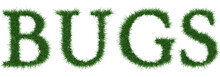 Bugs - 3D Rendering Fresh Grass Letters Isolated On Whhite Background.