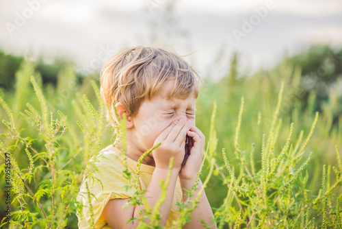 Boy sneezes because of an allergy to ragweed Wallpaper Mural