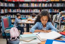 Schoolgirl Reading Book In Library