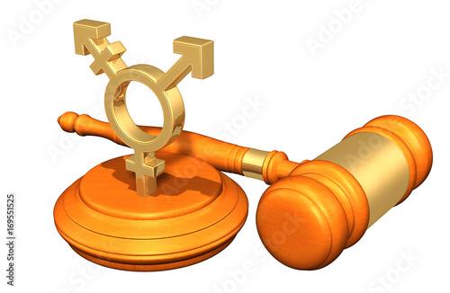Photo Transgender Symbol Legal Concept 3D Illustration