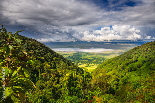 Photo sur Toile Taupe Landscape in The Ngorongoro Crater - Tanzania