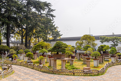 Fotobehang Zuid-Amerika land Nature of The Humble Administrator's Garden, a Chinese garden in Suzhou, a UNESCO World Heritage Site