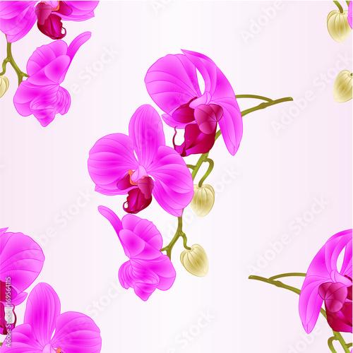 bezszwowej-tekstury-phalaenopsis-piekny-storczykowy-purpurowy-trzon-z-kwiatow-i-paczkow-zblizenia-rocznika-editable-ilustracyjnym