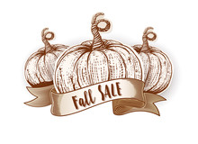 Fall Sale Calligraphy On Ribbon With Sketch Pumpkins. Autumn Season Sale Poster With The Decor Of Paper Cut Pumpkins. Engraving Vintage Vector Illustration.
