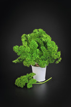 Organic Vegetable Parsley On B...