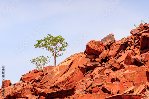 Papiers peints Brique Landscape of the Rocks and nature of Twyfelfontein, Namibia