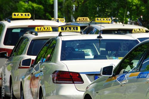 Zdjęcie XXL Czekam na taksówkę