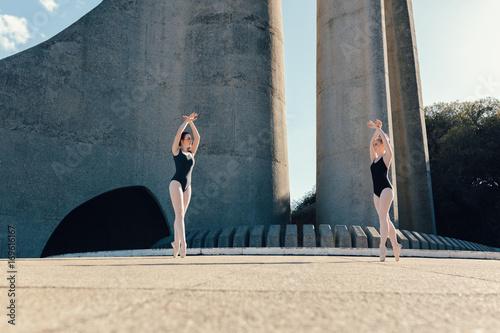 Photo  Female ballet dancers practicing a duet dance