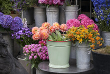 Bouquet Of Dahlias In A Galvanized Bucket Stands On A Chair Near The Entrance To The Store.
