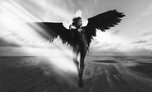 Fantastic Female Character With Black Wings - 3d Rendering