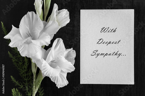 White blank condolence card with text and white gladiolus flower on white blank condolence card with text and white gladiolus flower on the dark background mightylinksfo