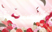 Pink Bokeh Background With Roses