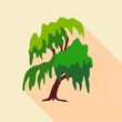Willow tree icon, flat style