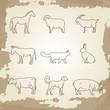 Farm animals thin line icons