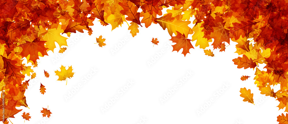 Fototapety, obrazy: Autumn banner with orange leaves.