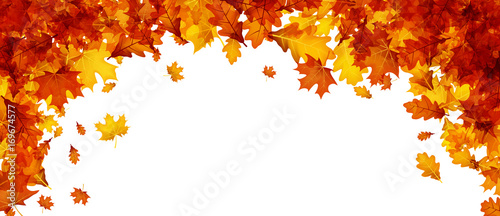 Fototapeta Autumn banner with orange leaves. obraz
