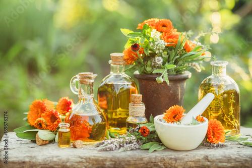 Variety of fresh herbs, calendula and oils Wallpaper Mural