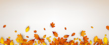 Autumn Banner With Orange Leav...