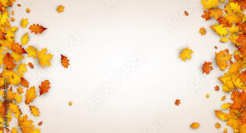 Fototapeta Autumn background with orange leaves. obraz
