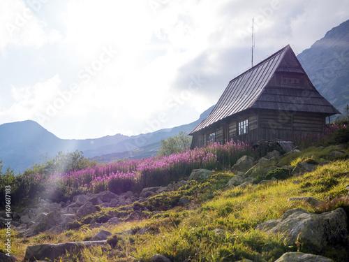 Printed kitchen splashbacks Kyoto House, Chalet, Bungalow in the mountains