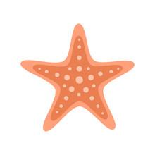 Orange Starfish Marine Animal. Vector Illustration Drawing. Isolated On White Background.