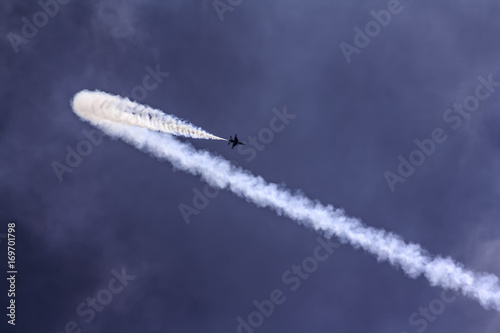 Fotomural Thunderbird Airshow
