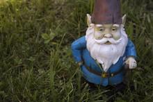 Garden Gnome In Lawn