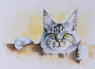 Obraz na SzkleMaine Coon portrait.Picture created with watercolors.