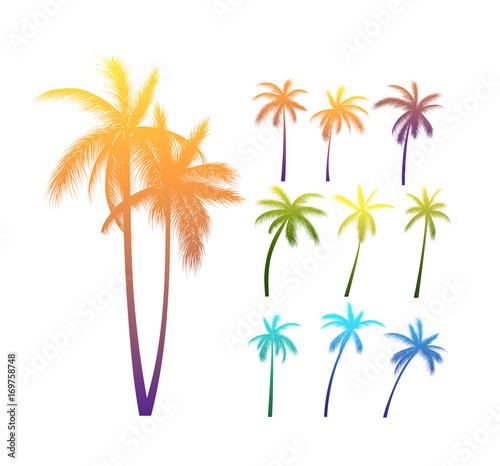 Photo Palm Trees Silhouettes