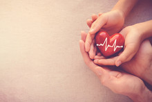 Adult And Child Hands Holding Red Heart With Cardiogram, Organ Donor Day, Health Care Love And Family Concept, World Heart Day, World Health Day, World Hypertension Day, Praying Concept