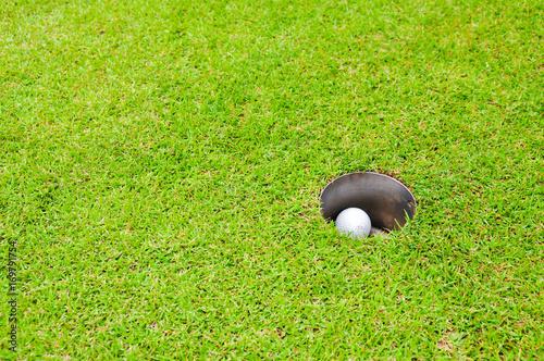 Papiers peints Jardin Golf ball in the hole