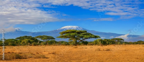 Aluminium Prints Africa Kilimanjaro mountain Tanzania snow capped under cloudy blue skies captured whist on safari in Africa Kenya.