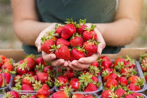 Photo Woman holding a juicy bitten strawberry into the camera,strawberry in arm