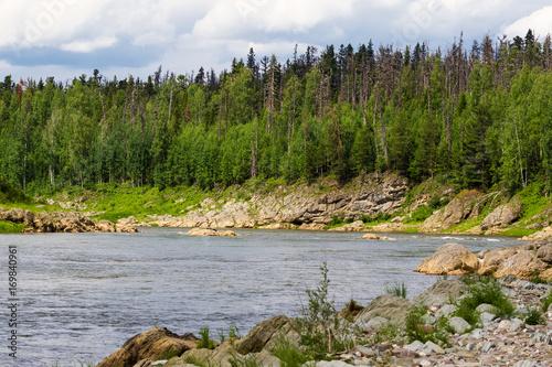 Fototapeta A small tributary of the Yenisei River. Krasnoyarsk region, Russia obraz