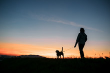 Sunset Silhouettes Woman And D...