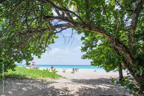 Photo  Varadero beach, Cuba