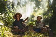 The Story Of Rural People Way Of Life, Karen Is With Nature On The Jungle.