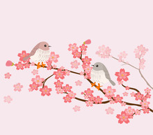 Cute Birds With Cherry Tree Background
